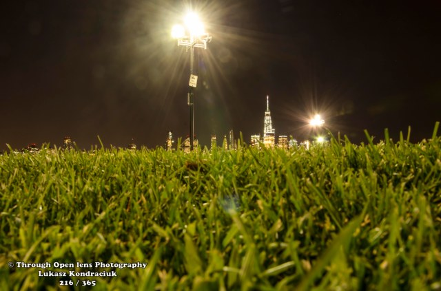 grass nyc